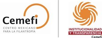 Cemefi IIT_web