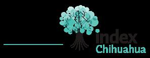 Fundación Index Chihuahua web