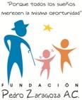LogoFPZ web